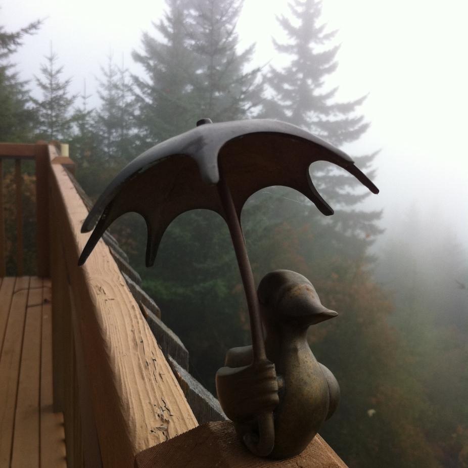 Anne's Deck Duck